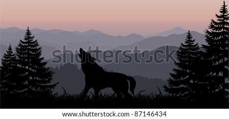 vector wolf in mountains