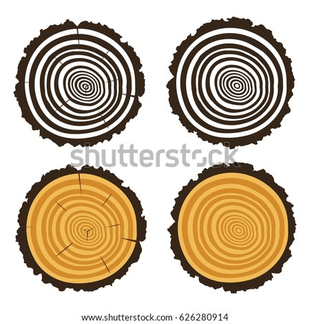 vector wooden cut of a tree log with concentric rings and bark, trunk section texture with rough circles isolated on white background