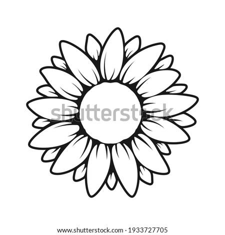 vector yellow sunflower