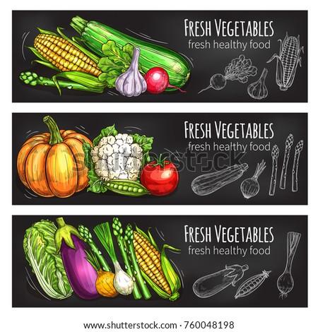Vegetable and bean fresh food chalkboard banner set. Veggies chalk sketch with tomato, onion, garlic, cabbage, radish, eggplant, corn, pea, pumpkin, asparagus, cauliflower for vegetarian food design #760048198