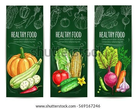 Vegetable and healthy food blackboard banner set. Fresh tomato, carrot, pepper, chinese cabbage, zucchini, corn, pumpkin, garlic, pea, beet vegetable chalk sketches on green chalkboard #569167246