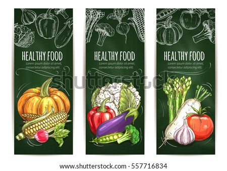 Vegetable banner blackboard. Healthy food of tomato and pepper, garlic and eggplant, corn, pumpkin, cauliflower and broccoli, pea and radish, asparagus. Organic food shop, farm market design #557716834