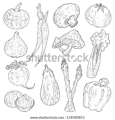 Vegetable Doodle Vector Set
