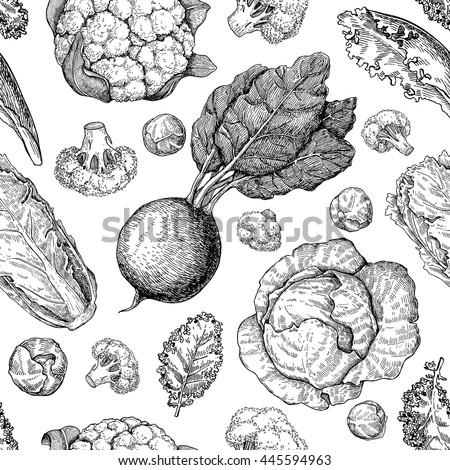 Vegetable drawing seamless vector pattern. Farm market products. Beetroot, cabbage, broccoli, cauliflower, lettuce, chinese cabbage. Detailed vegetarian food drawing.