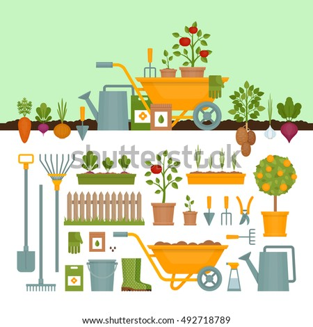 Vegetable garden. Garden tools. Banner with vegetable. Flat style, vector illustration.