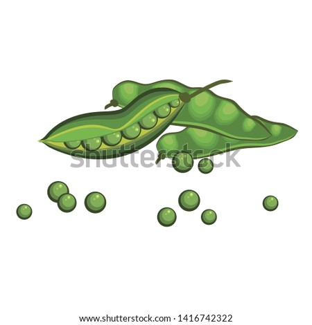 Vegetable green peas in pods and peas. Vector illustration.
