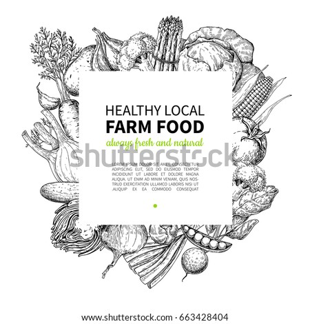 Vegetable hand drawn vintage vector frame illustration. Farm Market poster. Vegetarian set of organic products. Detailed food drawing. Great for menu, banner, label, logo, flyer