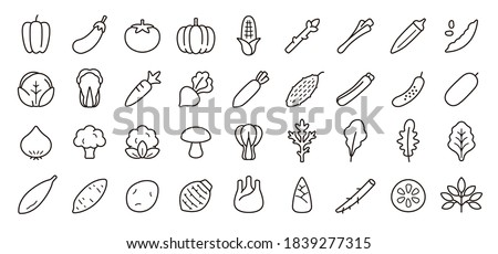 Vegetable Icon Set (Thin Line Version)