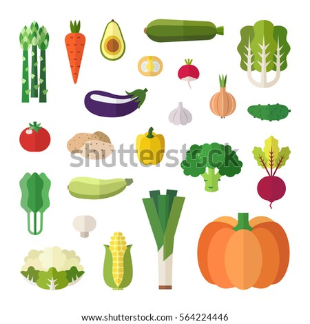 Vegetable icons vector set. Flat style design. Isolated objects. #564224446