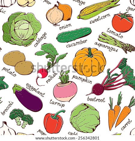 Vegetable pattern, seamless hand drawn food background
