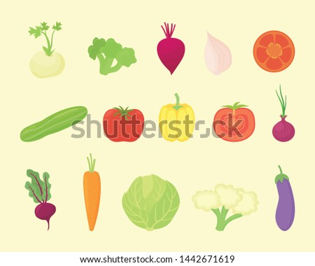 vegetable set collection with various kind and various colors with modern flat style - vector