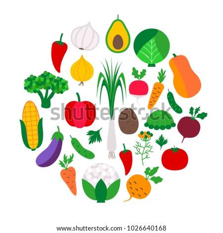 Vegetable set in circle. Vector illustration of vegetables on white.