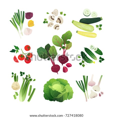 Vegetable set of onion, mushroom, zucchini, tomato, beetroot, cucumbers, celery, green cabbage and garlic