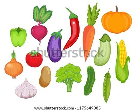 vegetable set. vector illustration.
