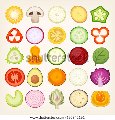 Vegetable slices illustrations. Vector vegetables cut in halves.