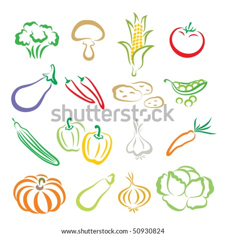 Vegetables - a broccoli, a mushroom, a corn, a tomato, a eggplant, chili peppers, potatoes, a green pea, a cucumber, peppers, a garlic, a carrot, a pumpkin, a marrow, an onion, a cabbage.