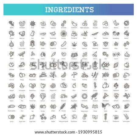 Vegetables and fruit thin line icon set. Vector ingredients