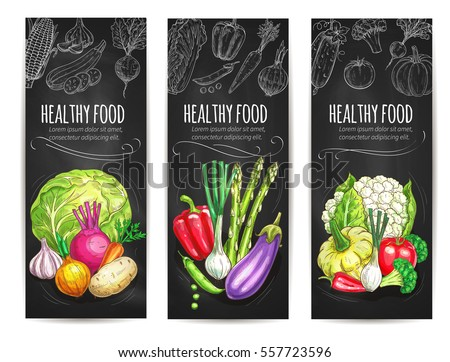 Vegetables banners of healthy veggies as cauliflower cabbage, garlic and potato, beet and leek, eggplant and asparagus, bell pepper, squash, tomato and broccoli. Vector farm harvest on chalkboard #557723596
