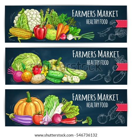 Vegetables banners with harvest ripe. Vector cabbage, cucumber, tomato and eggplant, kohlrabi, onion and corn, pumpkin and zucchini, radish and leek. Chalk sketched healthy vegetables on chalkboard #546736132