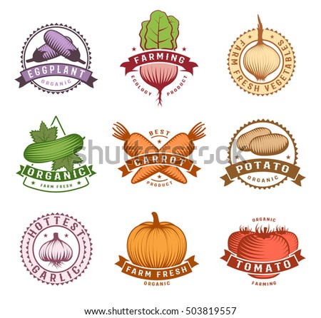 Vegetables colorful labels set with potato pumpkin and cucumber beet tomato and eggplant isolated vector illustration