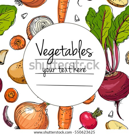 Vegetables. Fresh food. Fresh food. Beets, radishes, carrots, onions, garlic, potatoes line drawn on a white background. Vector illustration.