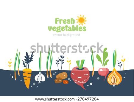 Free Vegetables Garden Vector Download Free Vector Art Stock