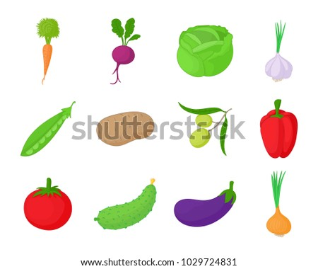 Vegetables icon set. Cartoon set of vegetables vector icons for web design isolated on white background #1029724831