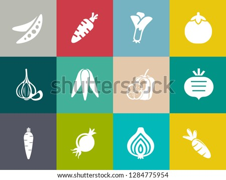 vegetables icons in set collection for design. Vegetables and vitamins symbols web illustration.