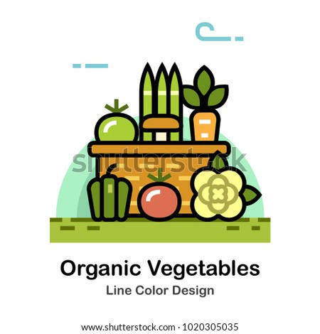 Vegetables in the basket Line color icon