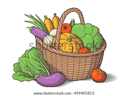 Fresh Organic Vegetables Vector Download Free Vector Art Stock