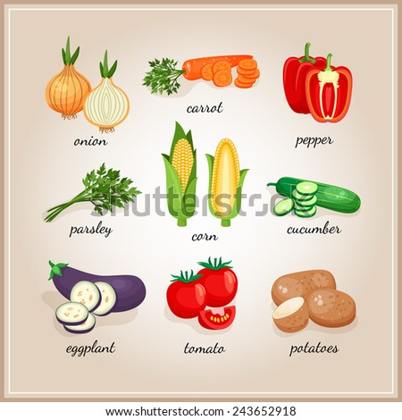 Vegetables ingredients. Collection of vegetables ingredients, each signed by the text. Vector illustration