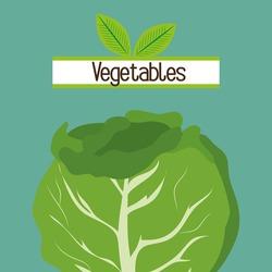 vegetables nutrition food fresh vector illustration graphic
