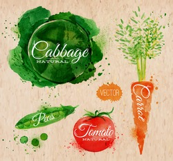 Vegetables set drawn watercolor blots and stains with a spray cabbage, carrot, tomato, peas
