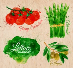 Vegetables set drawn watercolor blots and stains with a spray lettuce, cherry tomatoes, asparagus, olives on kraft paper