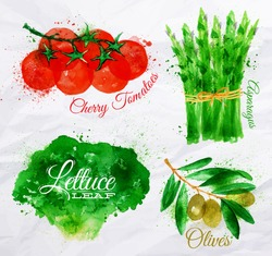 Vegetables set drawn watercolor blots and stains with a spray lettuce, cherry tomatoes, asparagus, olives