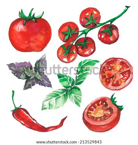 vegetables set drawn watercolor