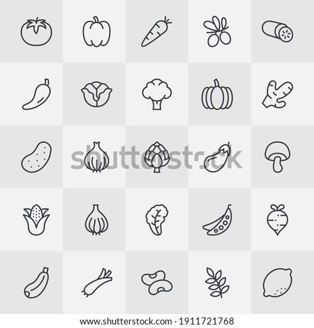 Vegetables Thin Line Icon Set. Farm Fresh Vegetables for Professional Web Design, Mobile App Design, Infographic and so on.