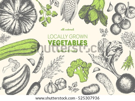 Vegetables top view frame. Farmers market menu design. Organic food poster. Vintage hand drawn sketch vector illustration. Linear graphic. #525307936