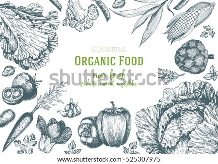 Vegetables top view frame. Farmers market menu design. Organic food poster. Vintage hand drawn sketch vector illustration. Linear graphic.