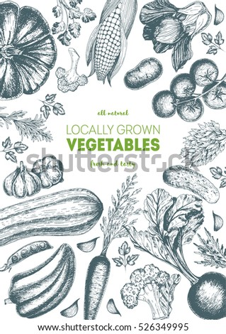 Vegetables top view frame. Farmers market menu design. Organic food poster. Vintage hand drawn sketch vector illustration. Linear graphic