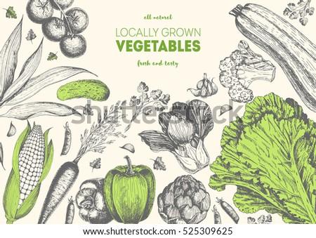 Vegetables top view frame with lettuce, pepper, corn, tomato, zucchini, carrot, artichoke, garlic, peas. Farmers market menu design. Organic food poster. Vintage hand drawn sketch vector illustration
