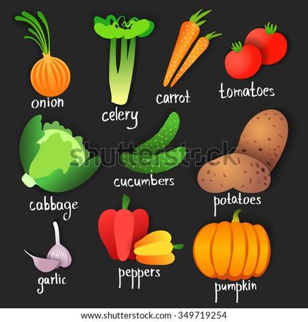 Vegetables. Vector
