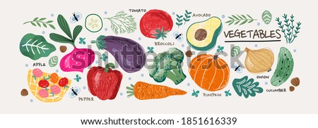 Vegetables.Vector food illustrations: tomato, beet, bay leaf, pepper, eggplant, cucumber, broccoli, carrot, pumpkin, avocado, onion and rosemary