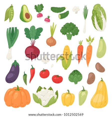Vegetables vector healthy nutrition of vegetably tomato pepper and carrot for vegetarians eating organic food from grocery illustration vegetated set diet isolated on white background #1012502569