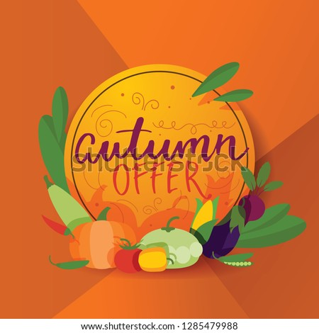 Vegetables vector healthy vegetably farming backdrop pumpkin tomato for vegetarians organic food in grocery shop illustration vegetated farm background #1285479988