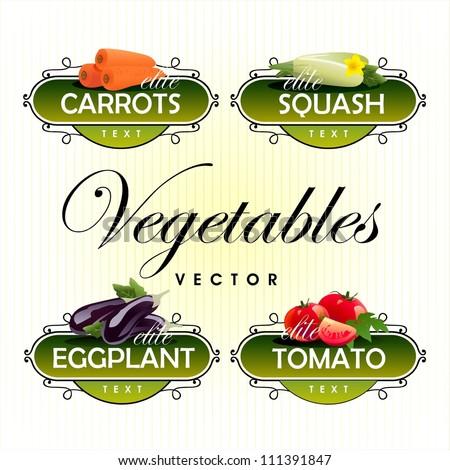 Vegetables. Vector. Tomato, eggplant, carrots, squash - stock vector