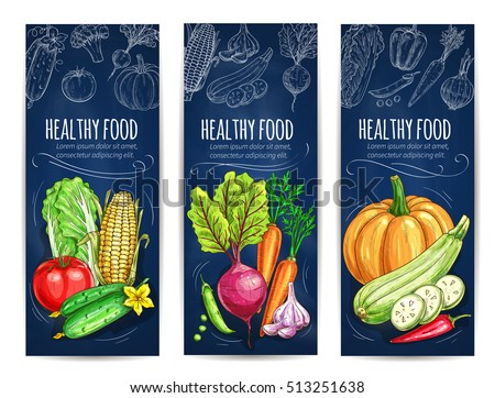 Vegetables. Vegetarian banners with chalk sketch cabbage, tomato, cucumber, corn, beet, pumpkin and pea, garlic and pepper on blackboard. Vegan menu card design #513251638