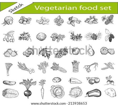 vegetarian outline