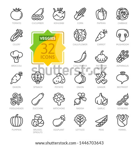 Vegetarian, vegetable, veggies - minimal thin line web icon set. Included the simple icons as kohlrabi, cauliflower, pattypan squash, fiddleheads, daikon. Outline icons collection