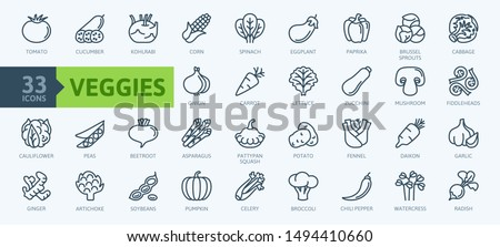 Vegetarian, vegetable, veggies - minimal thin line web icon set. Included the simple vector icons as tomato, cucumber, kohlrabi, cauliflower, pattypan squash, fiddleheads. Outline icons collection.
